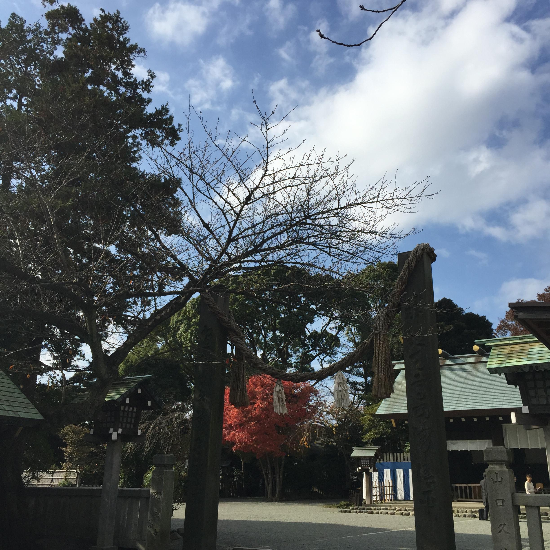 横浜総鎮守【伊勢山皇大神宮】は関東のお伊勢様!境内からランドマークタワーが見える!