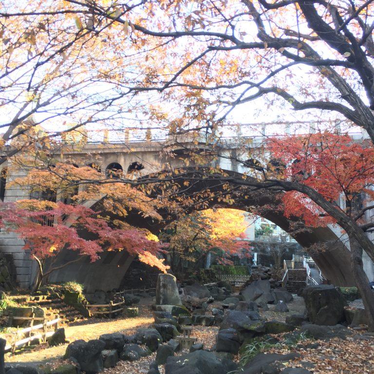 東京都 王子の『音無 親水公園』