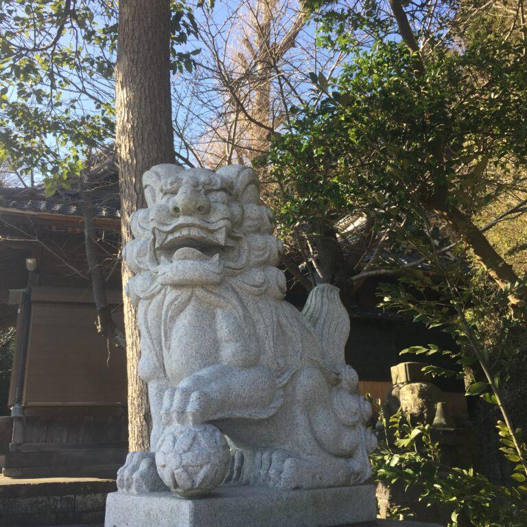 大きな銀杏の木を抱え青い海を臨む!横須賀市野比『白髭神社』