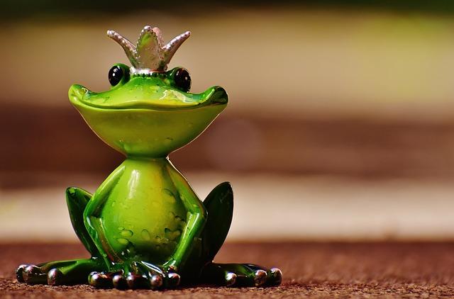 【ラッキーモチーフ】カエルは幸運の象徴です♪カエルモチーフで金運と仕事運をアップ!