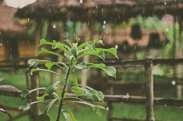 雨は好きですか?運気を上げる雨の日おすすめの過ごし方10選!