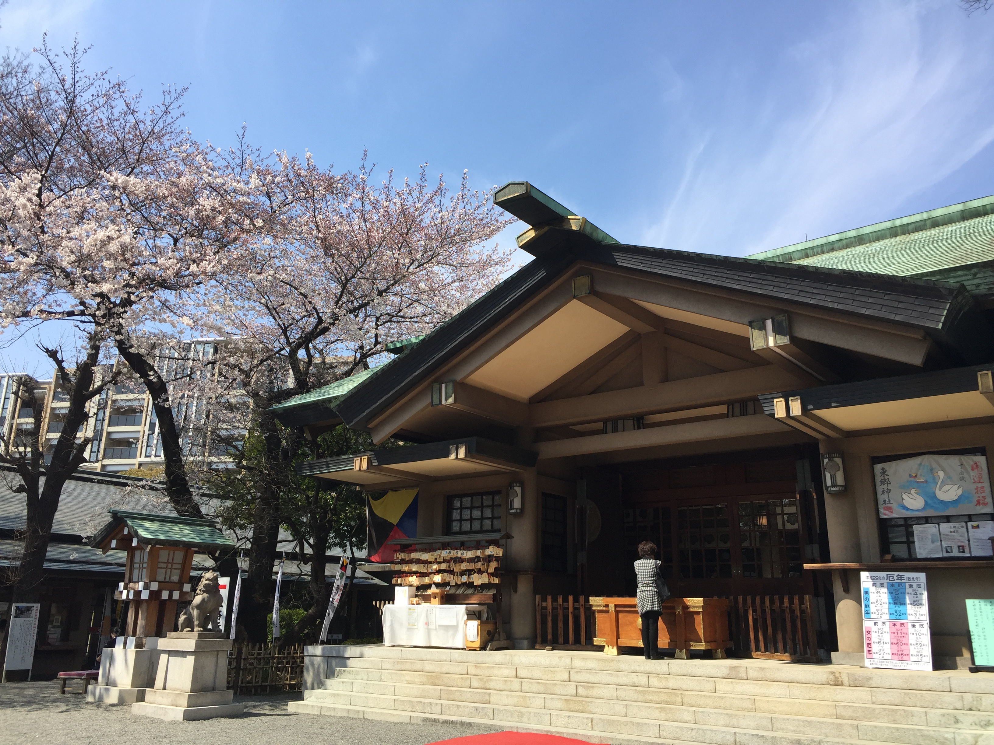 Z旗がカッコイイ原宿の『東郷神社』に参拝しました♪都心でも緑がいっぱい!
